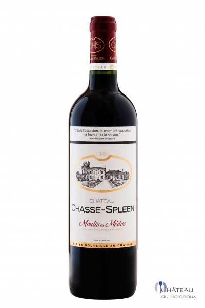 2013 Château Chasse-Spleen